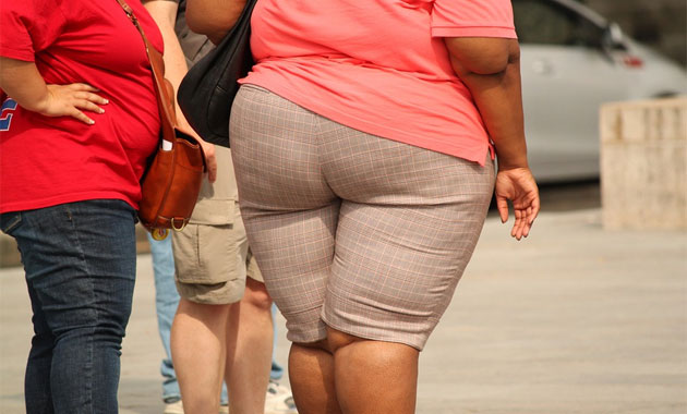 fat - The Big Ones: 3 Health Issues That Claim Most Lives Today